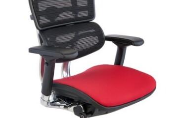 Ergohuman Color - Grospol - Fotele i krzesła biurowe